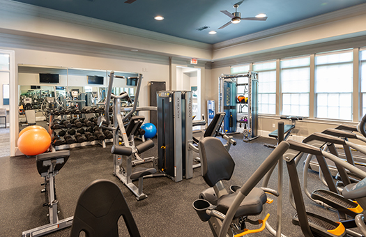 Bell Apex Fitness Studio